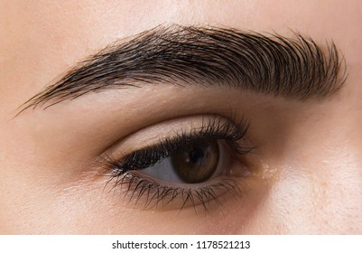 macro photo of a woman's eye, eyelashes and eyebrows