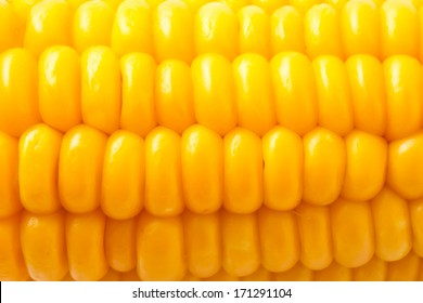 Macro photo of yellow corn background, healthy and tasty food