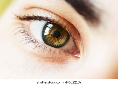 Macro photo of a young male eye