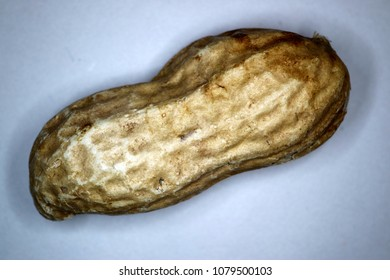 Macro photograph of peanut in shell.