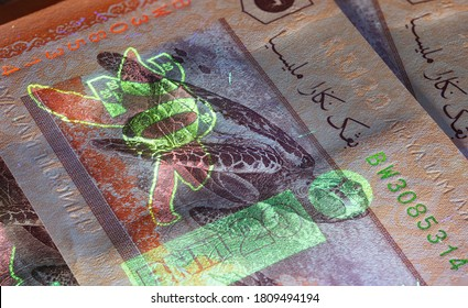 Macro photography of 20 Malaysian ringgit with fluor light. Extreme close-up of RM20 Malaysia. Sharp capture of the Hawksbill turtle on the banknote. Invisible fluorescent image gets visible
