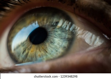Macro photography of a green and blue eye looking away