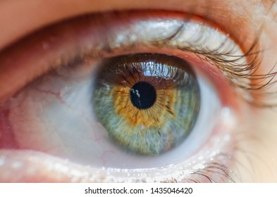 Eye Pupil Images, Stock Photos & Vectors | Shutterstock