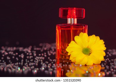 Macro photography of a transparent bottle of perfume standing on a mirror near a beautiful yellow flower among rhinestones. Studio photography close up on a black background, using red backlighting.