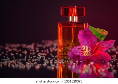 Macro photography of a transparent bottle of perfume standing on a mirror near a pink flower among rhinestones. Studio photography close up on a black background, using red backlighting.