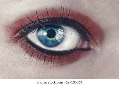 Macro picture of a woman's eye.