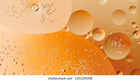 Macro shot of backlit water-oil emulsion over colored background. Gas-liquid-liquid emulsion. Multiphase mixture. Tiny gas bubbles inside larger oil bubbles inside water base. Simple beauty of physics