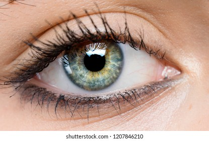 macro shot of beautiful eye