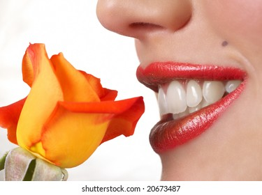 Macro shot of beautiful full lips with bright fashionable lipstick and orange rose. Not a crop. Shallow depth of field. Not isolated