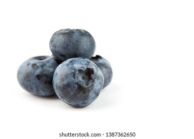 Macro shot of a Blueberry