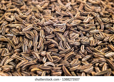 Macro shot of dried organic caraway seeds. Caraway seeds background. Natural seasoning texture. Close up.