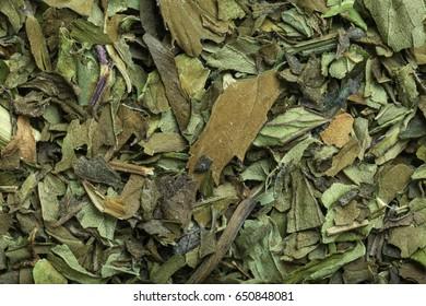 Macro shot of dried peppermint tea