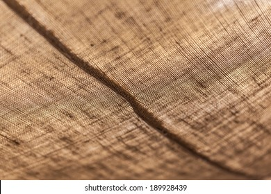 macro shot of the fabric of a tent in the desert