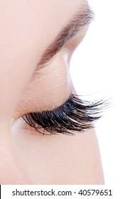 Macro shot of a female eye with long false eyelashes
