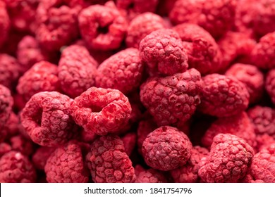 Macro shot of freeze dried organic raspberries, raw delicious snack, cooking baking ingredients. Red berries juicy summer background. Natural sugars, healthy food, fresh fruits concept, text space