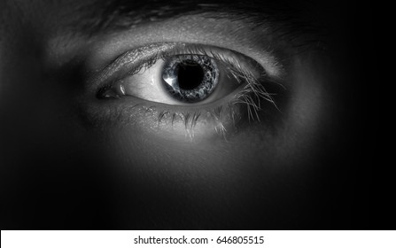 Macro shot of male human eye in black and white toned.
