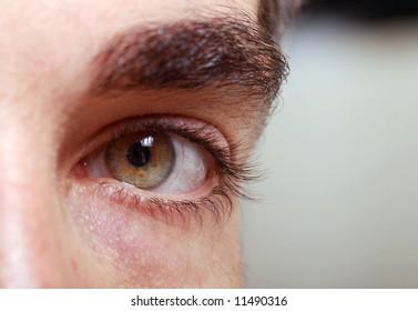 Macro shot of a male model eye