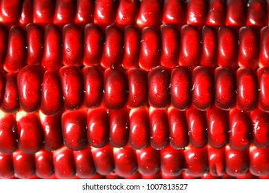 Macro shot of Siam Ruby Queen sweet red corn. The unique new breeding.Ruby red and plump seeds.Exotic charming color is its signature.Tasty and high value of nutrition.Stunning of ruby red background.