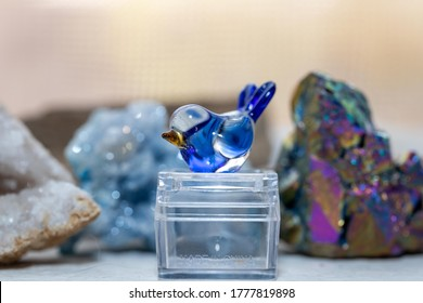 Macro shot of a small glass blue jay knick knack