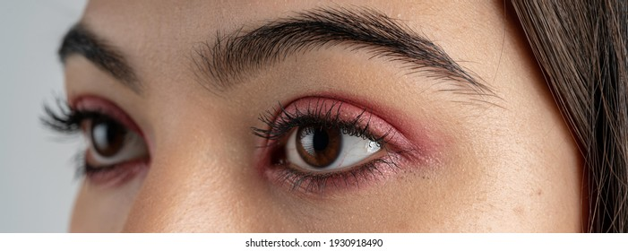 Macro shot of woman eye makeup with red eyeshadow. Close-up of woman eyelashes. Panoramic shot.