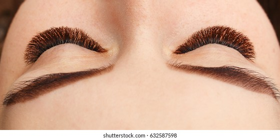 Macro shot of woman's beautiful eye with extremely long eyelashes. Sexy view, sensual look. Female eyes with long eyelashes