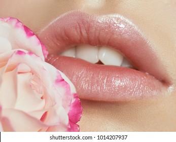 Macro shot of woman's lips. Nude look makeup and tender rose.