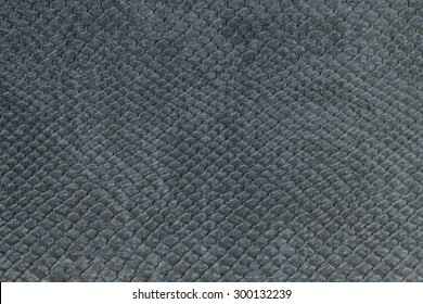 macro texture of gray snakeskin studio