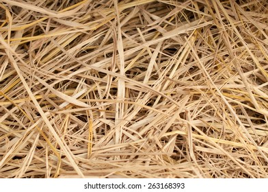 Macro texture of straw collected in a haystack in summer sunlight