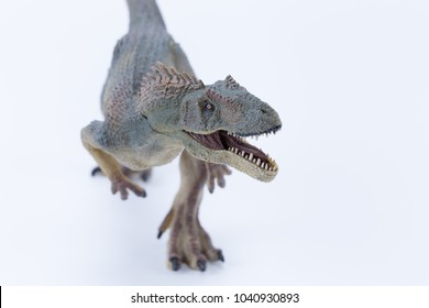 Macro Top view Close up Allosaurus dinosaur roaring and in attack position with white background - mouth open