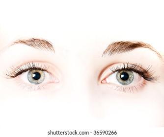 macro very beautiful female eye