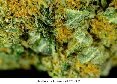 Macro view of medical marijuana and oil resin  on black background.