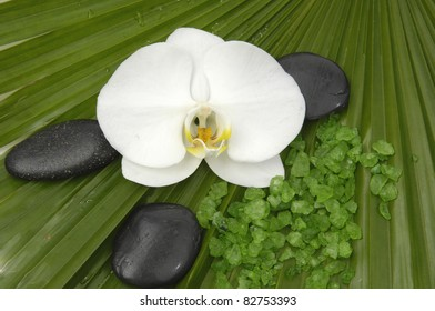 Macro of white orchid with green bath salts on palm leaf