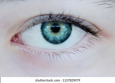 Macro of a woman's beautiful green eyes. Extreme shallow depth of field with selective focus on center of eye.