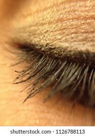 Macro zoom make up eye lash of a woman