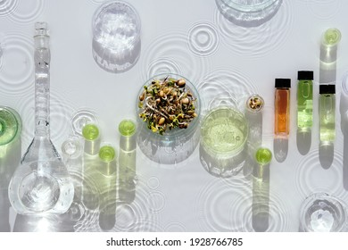 Macrobiotic food. Mix of fresh sprouts in glass jar. Long shadows, water splashes. Nutrition value of sprouting mix. Green fresh plants in laboratory. Chemical tubes, petri dishes, glass vials.