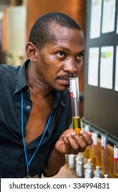 MADAGASCAR, NOSY BE - DECEMBER 6, 2014: Chief Technologist perfume factory checks Ylang Ylang extract the smell. Madagascar, Nosy Be. December 6, 2014.