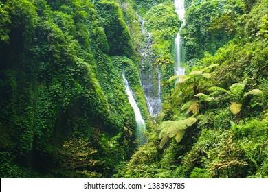 Madakaripura Waterfall ??- Deep Forest Waterfall in East Java, Indonesia
