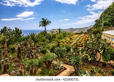 Madeira, Botanical Garden Monte, Funchal, Portugal