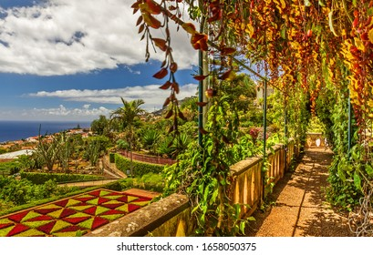 Madeira island, botanical garden Monte, Funchal, Balcony with plants landscape view, Portugal