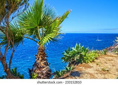 Madeira island, Portugal. Tropical beach ocean view, Funchal