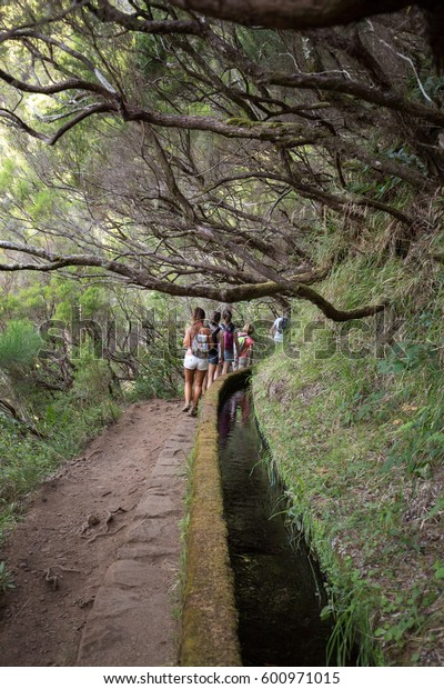 MADEIRA, PORTUGAL - SEPTEMBER 6, 2016: Tourist is walking  along irrigation canals. Historic water supply system, known as Levada in tropical forest, Madeira Island, Portugal