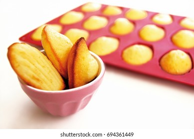 Madeleines: Small French cakes. Homemade pastry on white background, isolated.