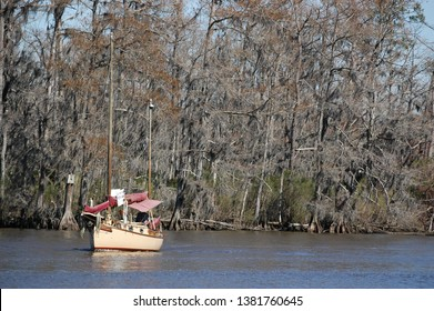 Louisiana State Park Images, Stock Photos & Vectors