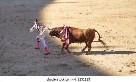 """Madrid - April 16, 2016: Spanish torero is performing a bullfight at the bullfight arena on April 16, 2016 in Madrid (Spain). """"Corrida"""" (bullfighting) of bulls is Spanish tradition."""