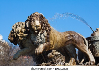 MADRID - MAY 1: Lions of the Fountain of Cibeles on May 1, 2012 in Madrid, Spain. Conducted by the architect Ventura Rodr�guez in 1782. One of the most recognizable symbols of the city