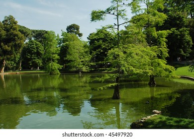 madrid park lake with trees and reflection in water