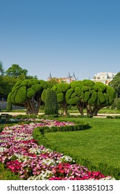 MADRID, SPAIN - AUGUST 31, 2018: Landscape in Buen Retiro Park, which was belonged to Spanish Monarchy until late 19th century, then it became a public park and located at edge of city center.
