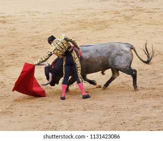 Madrid, Spain bullfight action. Matador, holding out red cape, leaning left (back to camera) as bull, with head & horns down charges at the cape. Matador has sword in hand behind his right leg.