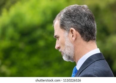 MADRID, SPAIN - Jun 04, 2018: King of Spain Felipe VI during a meeting with the president of Ukraine Petr Poroshenko