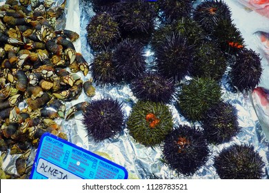 MADRID, SPAIN - MARCH 23, 2018: The range of fresh goose barnacles and sea urchins in the store